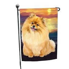 pomeranians dog garden flag beautiful
