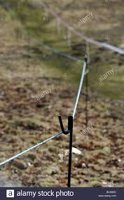 Temporary Metal Post Supporting Rope Fencing Stock Photo Alamy