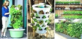 backyard gardening ideas lush raised