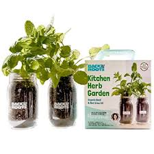 indoor herb garden kit by back to the