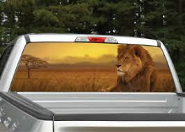 Lion In Sunset Rear Window Decal Graphic For Truck Suv Ebay
