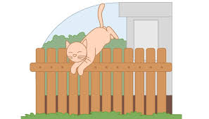 Cat Proofing Your Fence Animals Mom Com