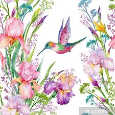 Iris Flowers And Hummingbirds Watercolor Seamless Pattern Wall Mural Pixers We Live To Change