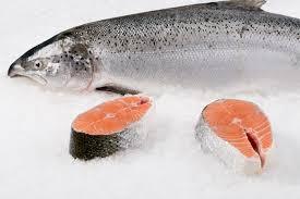 norwegian salmon steak citarella