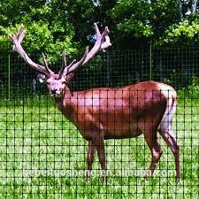 Deer Plastic Fence Deer Plastic Fence Netting Buy Deer Plastic Fence Deer Fence Deer Fence Netting Product On Alibaba Com