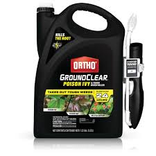 11+ Ortho Ant Killer Home Depot  Background