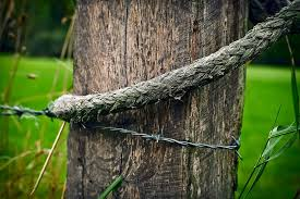 Wood Pile Wood Pile Post Fence Post Wooden Posts Old Fence Nature Weathered Pxfuel