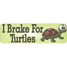 Amazon Com Stickertalk I Brake For Turtles Vinyl Sticker 10 Inches By 3 Inches Automotive
