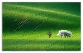 green hills nature scenery ultra hd