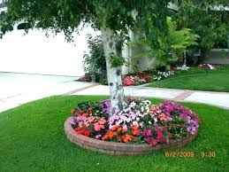 front yard tree ideas freshzthreadzco