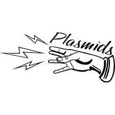 Plasmids Bioshock Vinyl Decal Laptop Decal Bumper Sticker Window Sticker Ebay