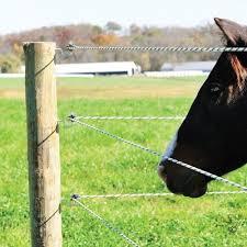 Corner Doughnut Insulator Horse Fencing Horses Fence