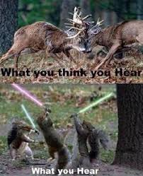 Image result for thinking about hunting meme