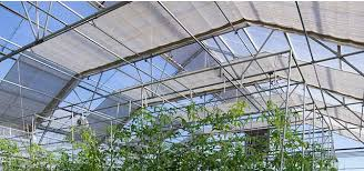 shade colth for greenhouse gothic