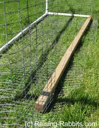 Rabbit Run How To Build An Outdoor Rabbit Pen Or Run With Pvc