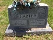 Sarah Adeline Carter 1875 - 1956 BillionGraves Record