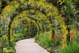 25 charming garden trellises and arbors