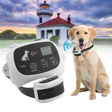 Buy Invisible Fence Brand Collar From 9 Usd Free Shipping Affordable Prices And Real Reviews On Joom
