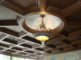 lamp drop ceiling light panels false
