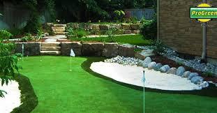 artificial grass gallery lion turf