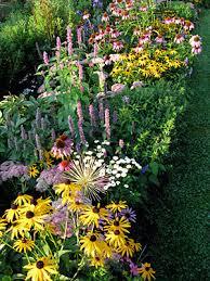 flower garden gaps in perennial gardens