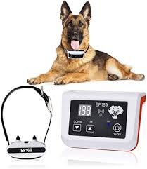 Top Rated In Dog Wireless Fences Helpful Customer Reviews Amazon Com