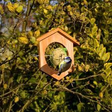 apple feeding station for birds apple