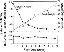 do broccoli sprout supplements with