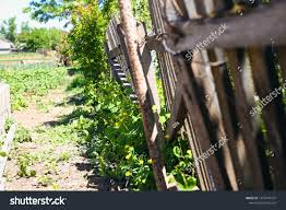 Wooden Fence Vegetable Garden Village Stock Photo Edit Now 1472544731
