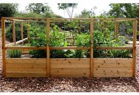 Raised Garden Bed 8 X 12 With Deer Fence Kit Bettergreenhouses Com