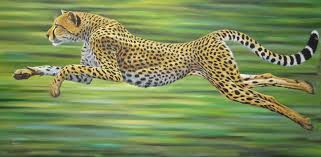 cheetah paintings maverick art of africa
