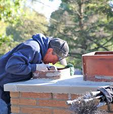 your home chimney mold growing in