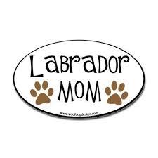 Labrador Mom Car Sticker Sticker Oval Labrador Mom Oval Black Border Oval Sticker By Caroline1 Labrador Mom Labrador Dachshund Mom