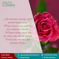 gambar bunga quotes gambar bunga