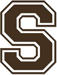 Amazon Com Applicable Pun Varsity Letter S Vinyl Decal For Outdoor Use On Cars Atv Boats Windows And More Brown 3 Inches Tall Automotive