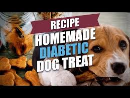 homemade diabetic dog treat recipe