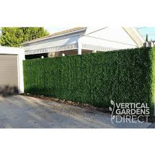 Artificial Boxwood Hedge 1m X 1m Plant Wall Screening Panel Uv Stabili Vertical Gardens Direct