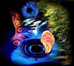 Sensación y Percepción | diegoalejandro4ccll