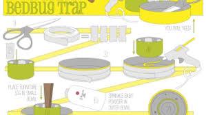 homemade bedbug trap designed by uf