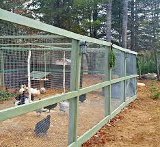 How To Build A Predator Proof Chicken Run The Old Farmer S Almanac