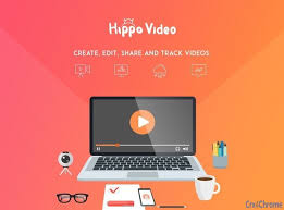 video editing software - hippo video