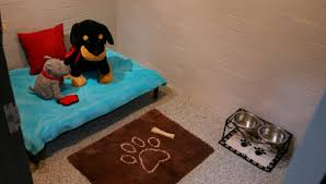 make a comfortable safe dog room 10