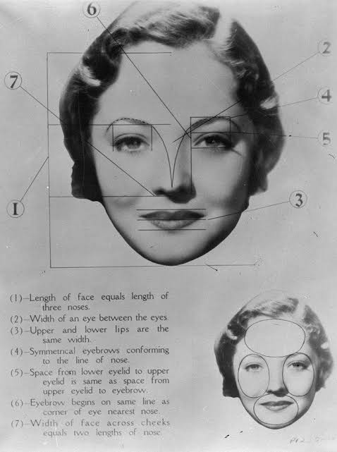 "Image result for konsep wajah ideal panjang wajah 3 kali hidung"""