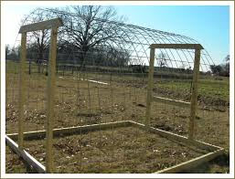 Kewer Building A Chicken Coop With Cattle Panels