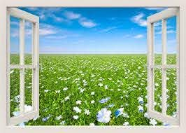 Flowers Field Wall Decal 3d Window Wall Decal Window View Etsy