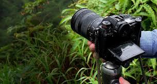 Lumix DC-S1, Toys Terbaik Untuk Videographer Profesional - Mata Lelaki