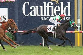 Caulfield Cup 2020 Field, Tips, Betting ...