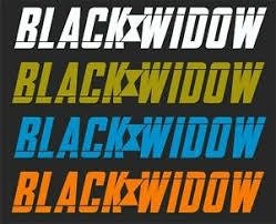 Black Widow 3 Car Window Decal 2 For 1 Price Pick Your Size And Color Ebay
