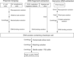 dna purification from multiple sources
