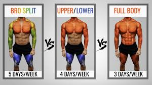 the best science based workout split to